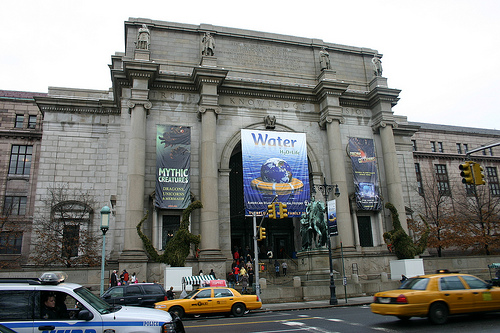 The American Museum Of Natural History Is One Of The World's Preeminent Institutions