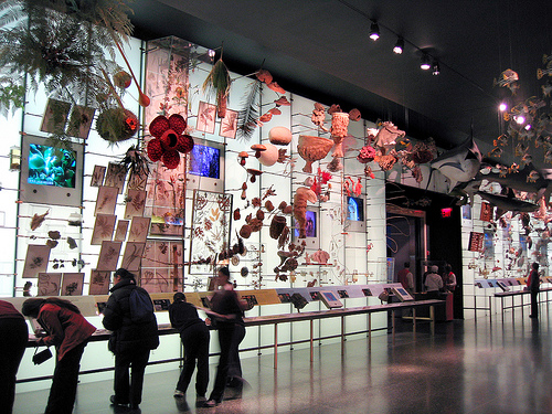 The American Museum Of Natural History Institutions For Scientific Research And Education.