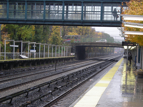 Pictures Of Botanical Garden Metro North Station