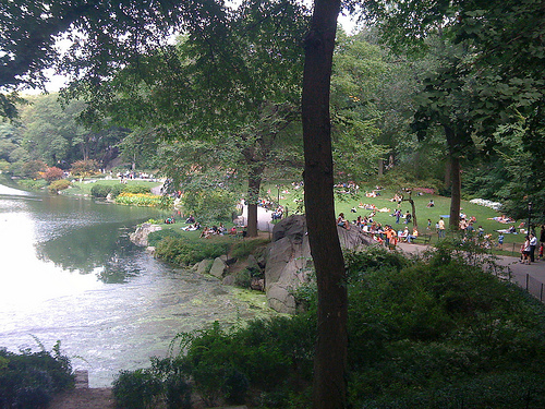 People Enjoy A Sunny Day In Central Park South.