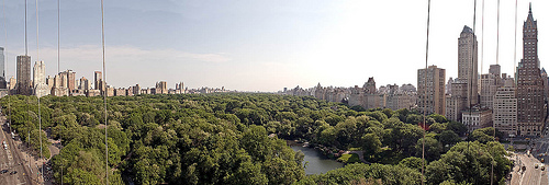 Panoramic View Of Central Park South