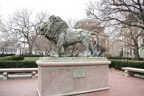 A Dramatic Lion Statue Outside Havemeyer Hall At Columbia University