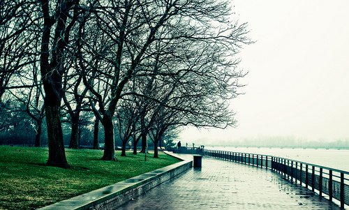 A Rainy Day On Liberty Island, Home Of The Statue Of Liberty
