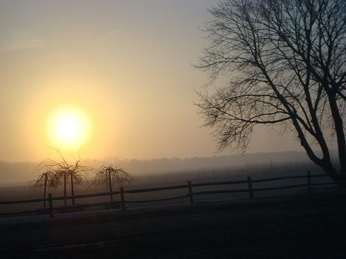 Morning On East Long Island