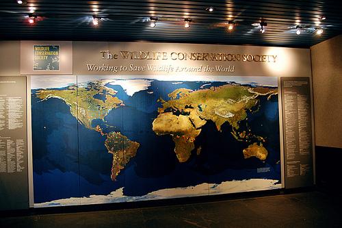 Image Gallery New York Aquarium Map