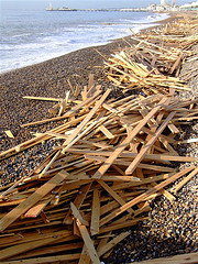 Driftwood Gathered On Brighton Beach