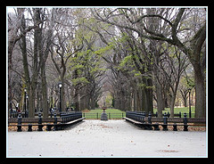 Central Park Is A Large Public, Urban Park That Occupies Over A Square Mile in The Heart Of Manhattan