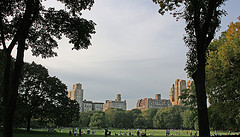 People Gather To Enjoy Time Spent In Central Park