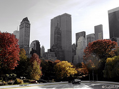 Central Park Is A Large Public, Urban Park That Occupies Over A Square Mile (341 Hectares)