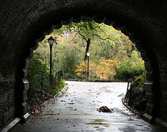 Under The Tunnel At Central Park, Located In The Heart Of Manhattan, With 25 Million Annual Visitors