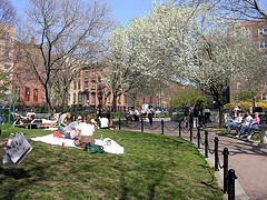 Cobble Hill Park, Earth Day 2007.a Small Park Located In Cobble Hill, Brooklyn,