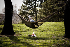 A Person Rests In A Hammock Between Two Trees In Fort Greene
