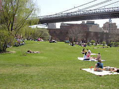People Enjoying Picnics On A Sunny Day In The Empire??Fulton Ferry State Park.