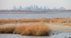 A view Of The City From Jamaica Bay.