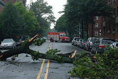 A Rare Tornado In August, 2007 Caused Damage And Disruption In Brooklyn