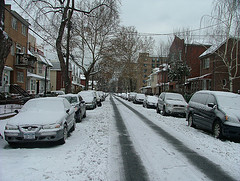 Snow Covered Cars In Midwood Brooklyn