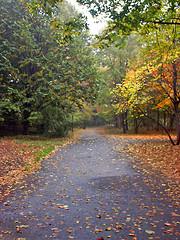 Prospect Park On An Autumn Day