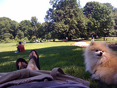 Prospect Park Is A 585-acre Public Park In The New York City Borough Of Brooklyn