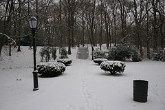 Richmond Hill, Queens Is A Middle Class Neighborhood That Is Covered In Snow On A Winter Day.