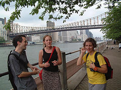 Roosevelt Island, Running From Manhattan's East 46th To East 85th Streets With A Maximum Width Of 800 Feet