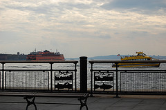 Breezy Evening At The Staten Island Of New York City