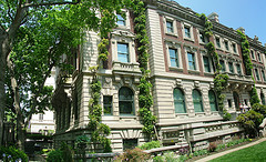 A Huge Building Called Andrew Carnegie Mansion Having Trees, Plants, Climbers Now Using As Museum