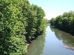 Bronx River Running Through The Bronx Zoo As Seen From The Wild Asia Monorail.