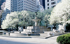 Exquisite Fountain And Trees In Bloom On Central Park South On A Spring Day
