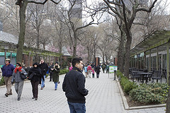 Early Spring Day At The Central Park Zoo