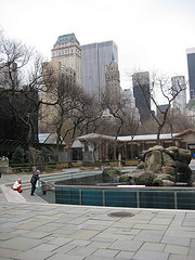 The Central Park Zoo Is Located In Central Park In New York City And Run By The Wildlife Conservation Society.