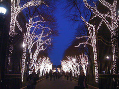 The Entrance Of Columbia University, The Winter Lights Glowing