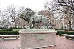 A Dramatic Lion Statue Outside Havemeyer Hall At Columbia University