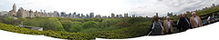 Panoramic Collage Assembled Of Views From The Roof Of Metropolitan Museum Of Art, Central Park Below