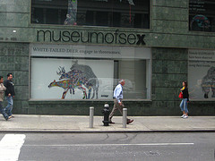The Museum Of Sex Opened On October 5th 2002 And Was Founded By Daniel Gluck.