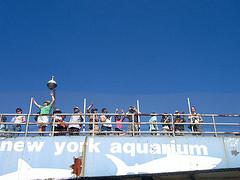 Visitors Enjoying The New York Aquarium, The Oldest Operating Aquarium In The Us