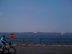 Overlooking The Sailboats On The New York Harbor On A Sunny Day