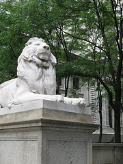One Of The Iconic Lions That Stand Guard Outside The New York Public Library