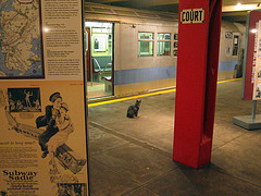 A Lone Cat In The New York Transit Museum.