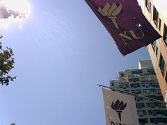 Flags Flying Over New York University