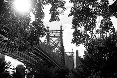 Black And White Shot Of The Queensboro Bridge From Below