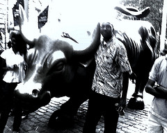 This Bull Statue Represents The Power Of The Wall Street Commerce.
