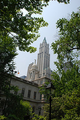 The Woolworth Building, As You Can See, A Work Of Art